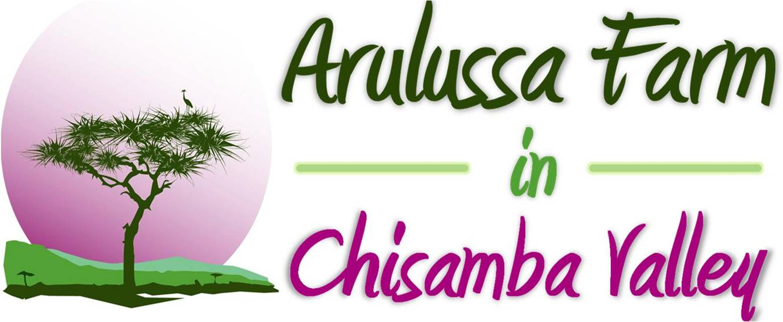 Arulussa Farm Chisamba Valley Farm Products From Zambia